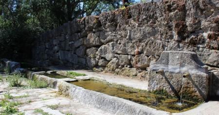 Pilar de la Dehesilla