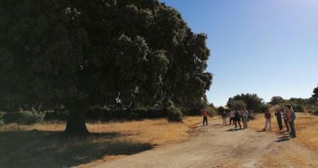 Ruta Peñaflor 16.08.2020 (2)